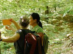 lebenswald022 klein