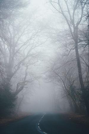 annie spratt unsplash Straße im Nebel klein